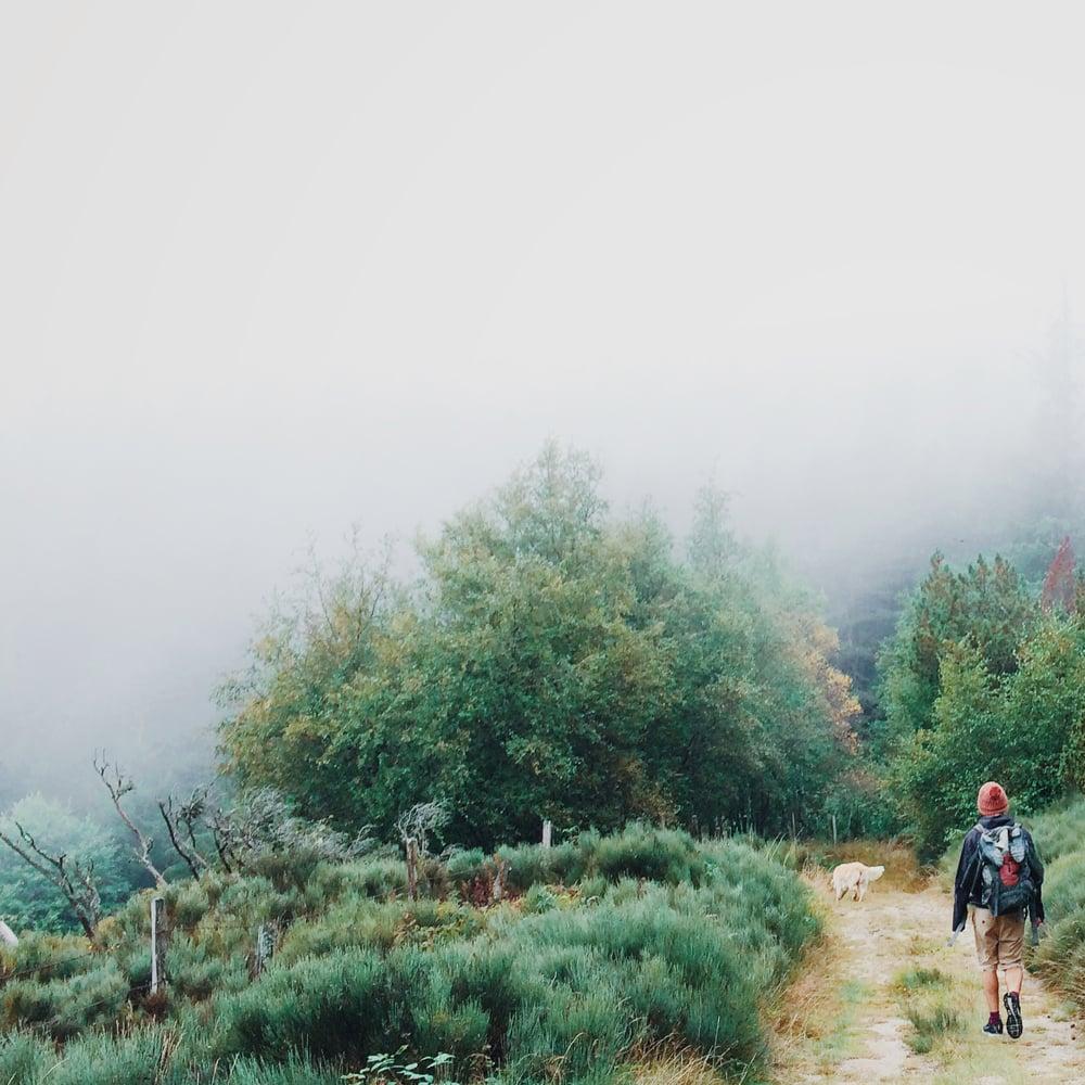 Un viaggio sensoriale attraverso il Ticino.